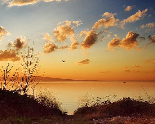 Lake Vaya