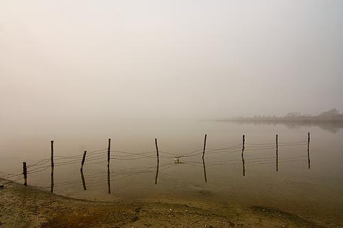 Thin Lake